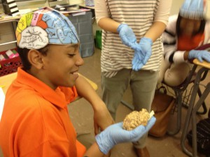 Helen Dole, New York local sent in this picture! Mount Sinai Neuroscientists explain neuroscience to the students.